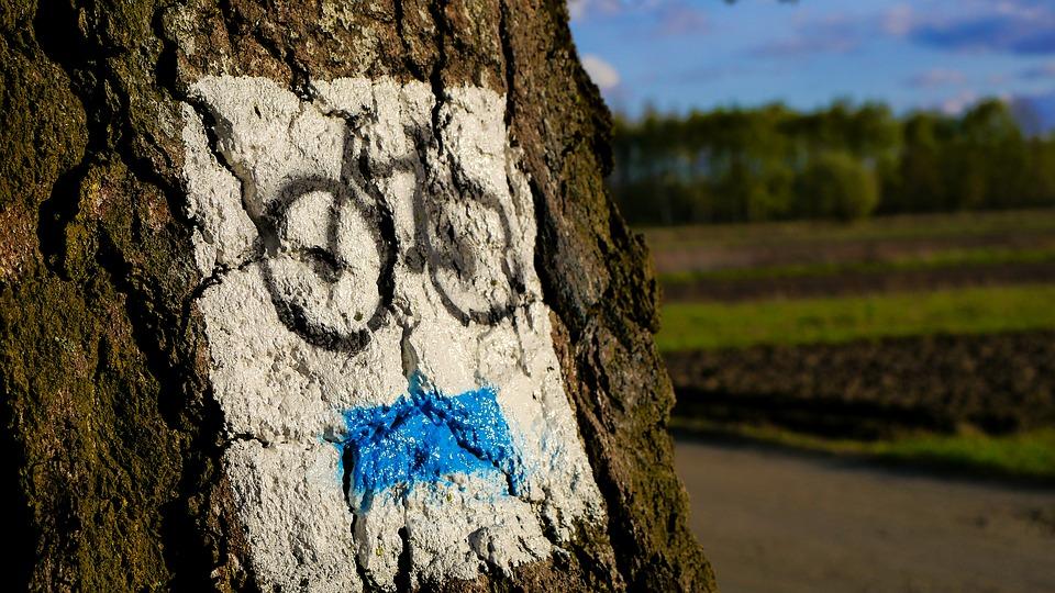 Trasy trekkingowe / rowerowe